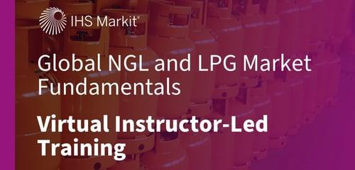 NGL-Fundamentals-VILT-graphic